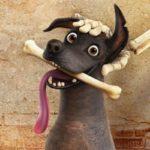 Coco – psia kość