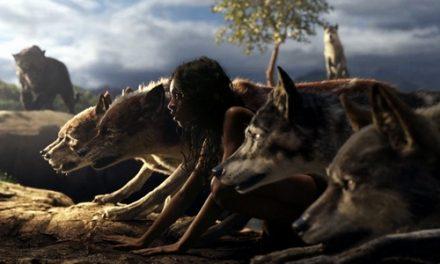 Księga Dżungli – kolejna odsłona na Netflixie